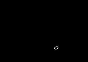 Каталог производителя FOX RACING